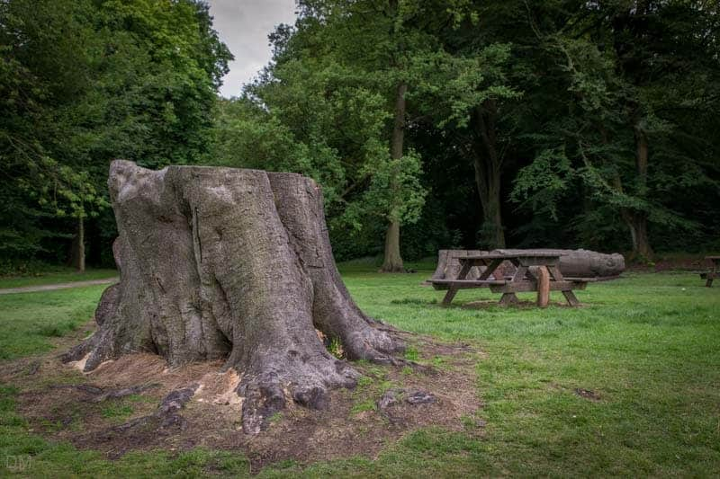 Picnic area at Haigh Country Park in Wigan