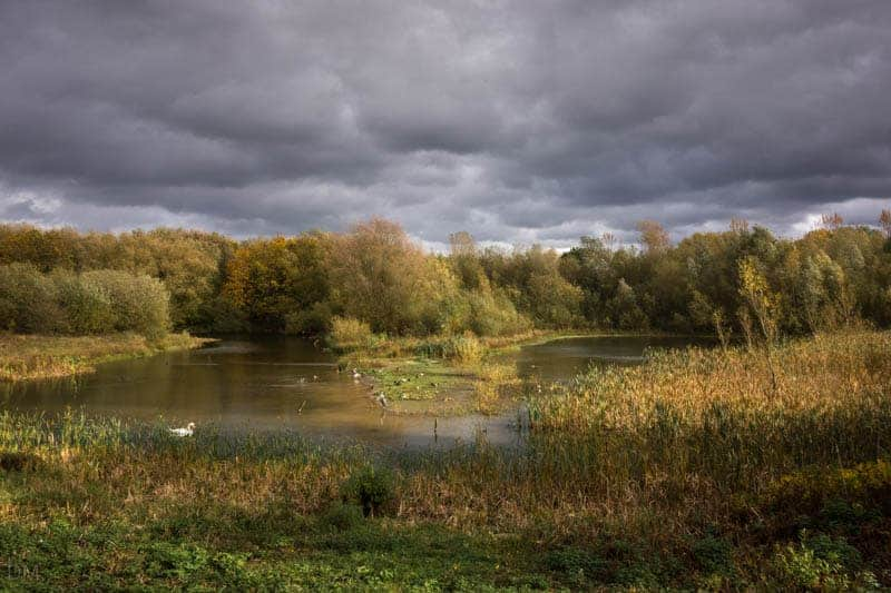View from Tom Edmondson Hide at Pennington Flash Country Park