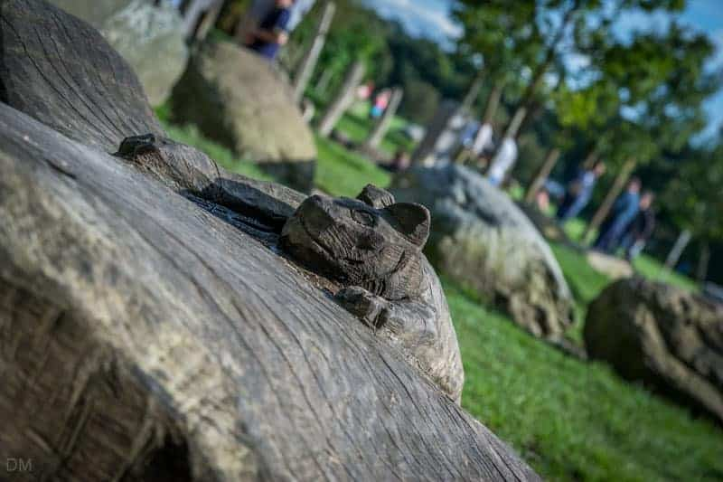 Tree Sculpture - The Wits, Witton Country Park, Blackburn