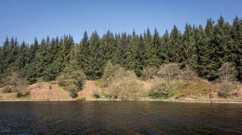 Looking over to the northern shore of Entwistle Reservoir