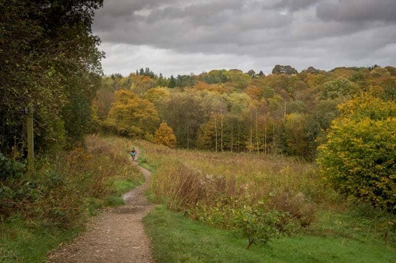 Ousel Nest Meadows, Jumbles Country Park