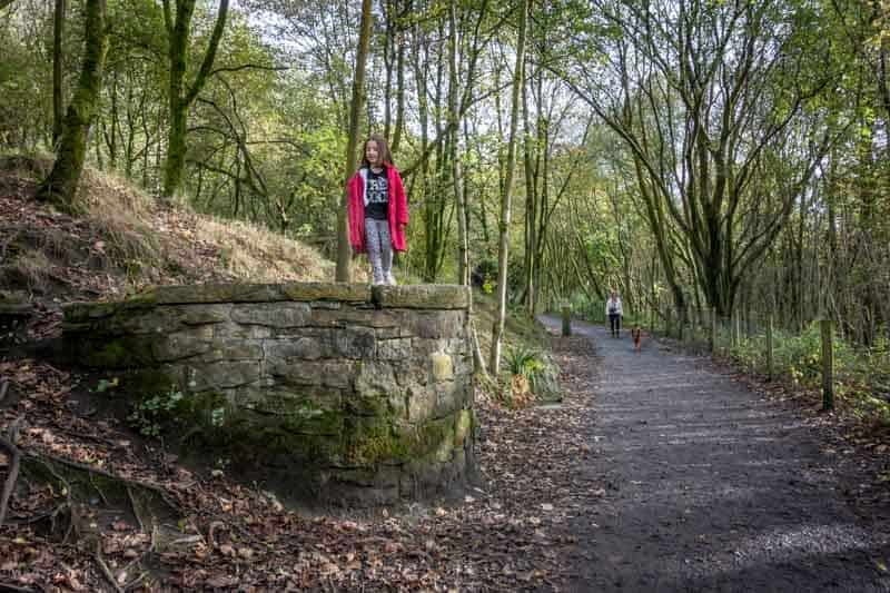 Woodland path at Jumbles Country Park, Bolton