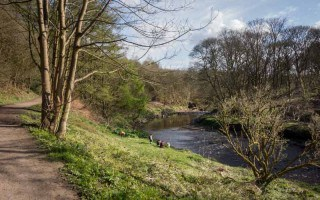 Woodland walk along banks of the River Croal, Moses Gate Country Park