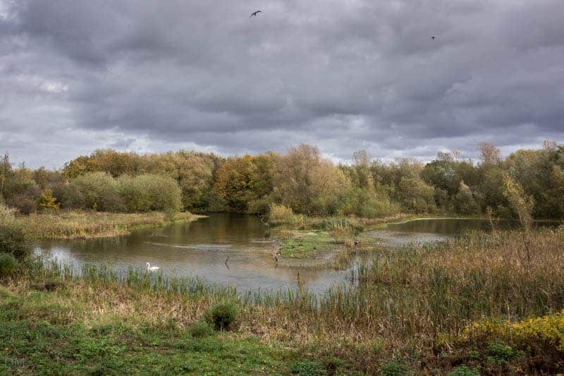 View of Peggy's Pond from the Tom Edmondson Hide at  Pennington Flash