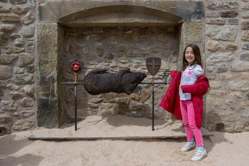 Girl roasting a pig at the castle at Astley Park in Chorley