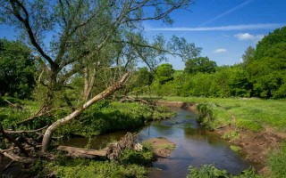 Sunny weather at Yarrow Valley Country Park in Chorley, Lancashire.