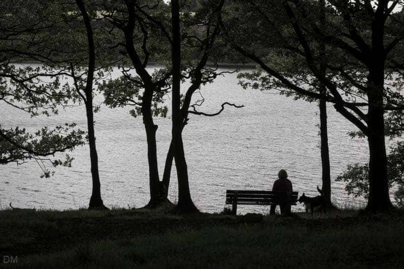 Woman on bench with dog at Lower Rivington Reservoir
