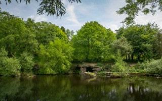 Lake at Japanese Garden in Rivington Terraced Gardens
