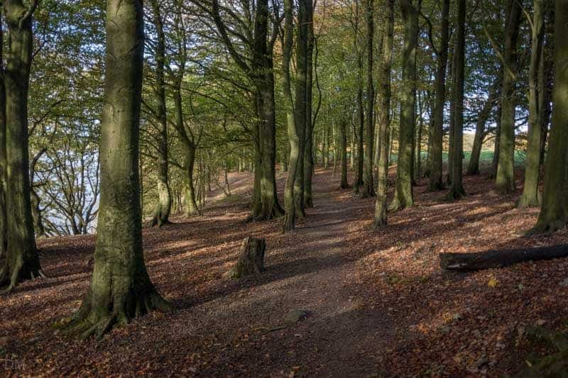 Shoreline Path, Lower Rivington Reservoir