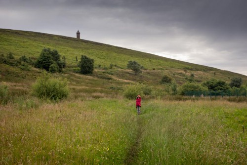 Walk to Darwen Tower from Sunnyhurst Wood