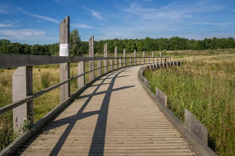 Walkway - Gravel Pit Trail at Brockholes nature reserve