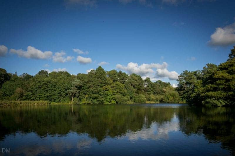 Cuerden Lake at Cuerden Valley Park