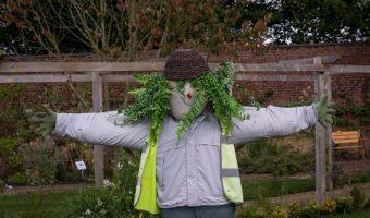 Scarecrow, Walled Garden, Worden Park