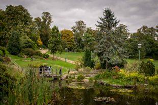 Japanese Garden, Avenham Park, Preston