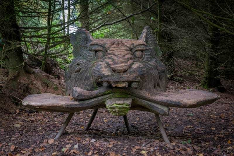 Black Tiger sculpture at Beacon Fell Country Park in Lancashire.