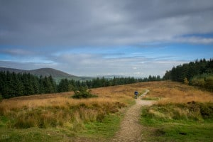 Path to Summit of Beacon Fell