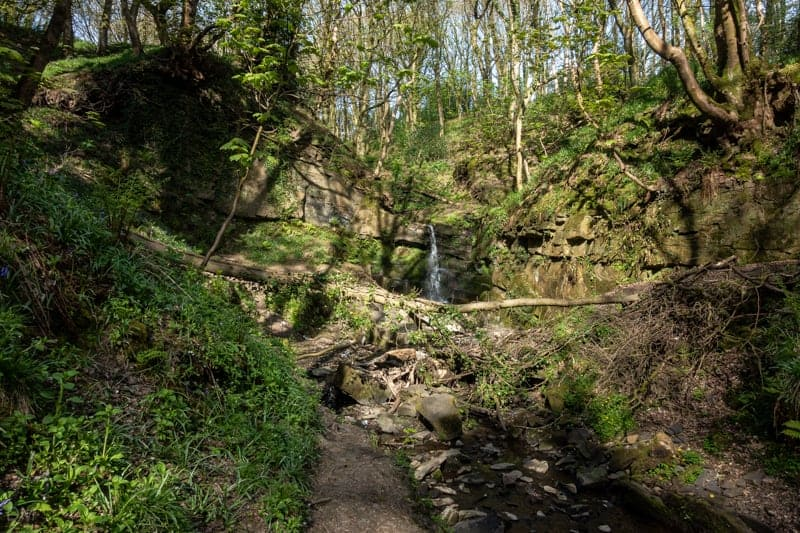Waterfall at Fairy Glen, Appley Bridge, Wigan