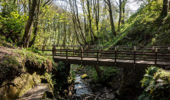 Footbridge at Fairy Glen, Wigan