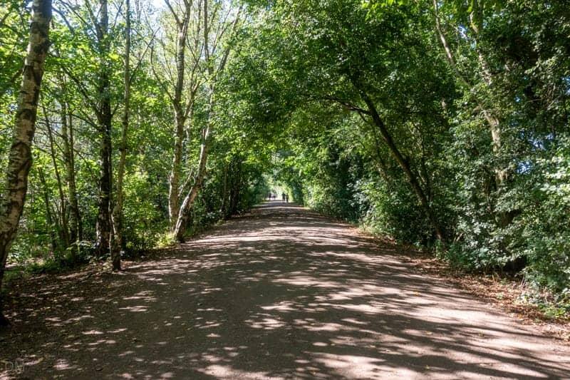 Path through woods at Chorlton Water Park