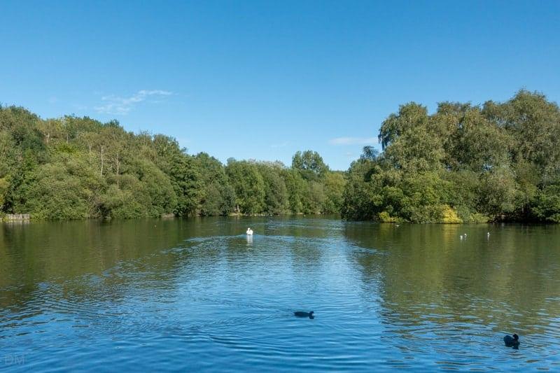 View of lake at Chorlton Water Park