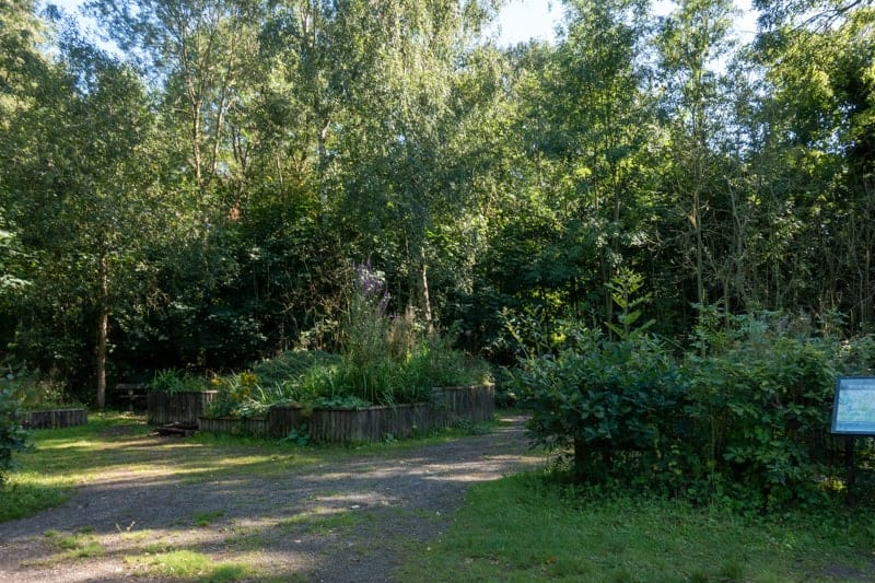 Sensory garden at Chorlton Water Park