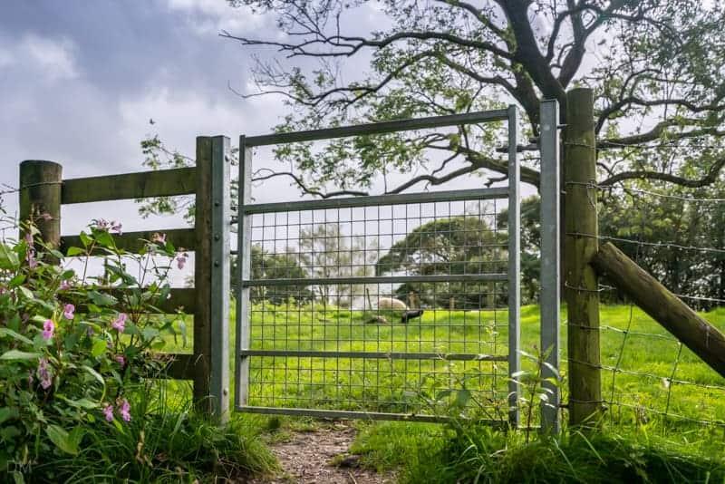 Gate into sheep field
