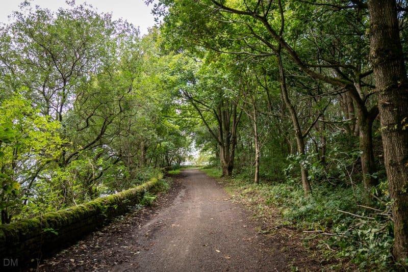 Path along eastern shore of Anglezarke