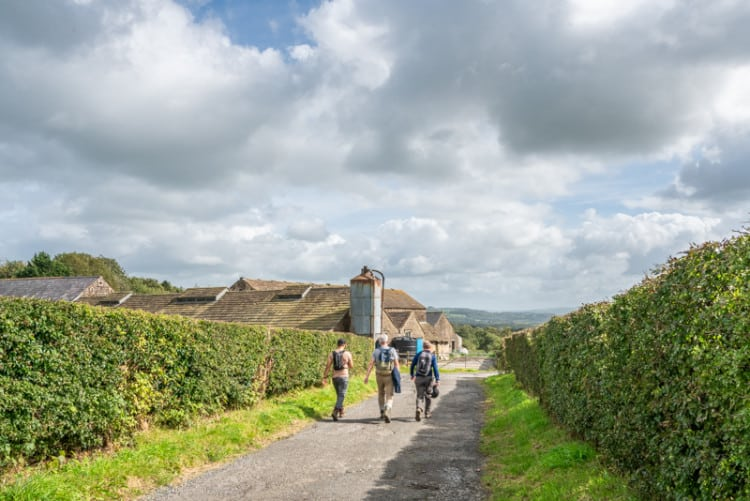 Walkers approaching Hall Barns Farm, Hurst Green