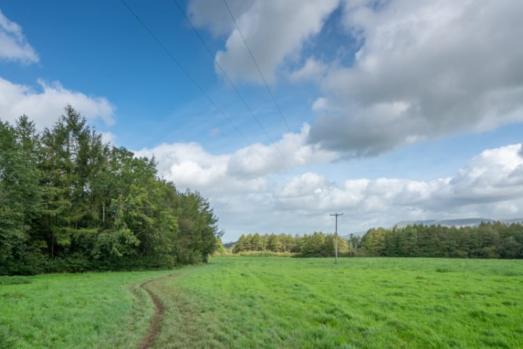 Path through field, Over Hacking Wood to the left