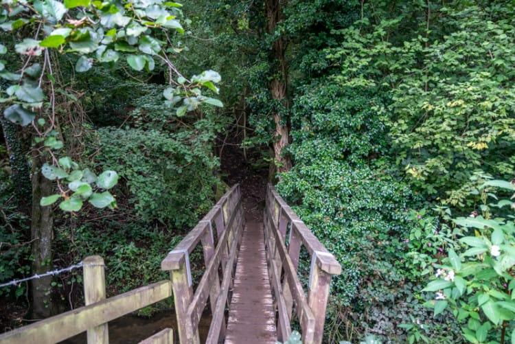 Wooden bridge, Raid Deep Wood