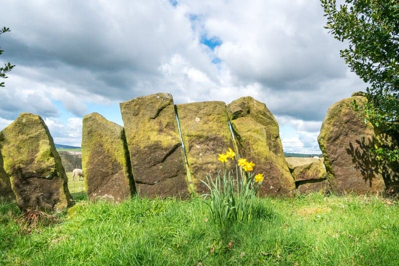 Stone slab cattle walls at Wycoller Country Park