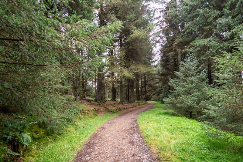 Path at Pendle Sculpture Trail
