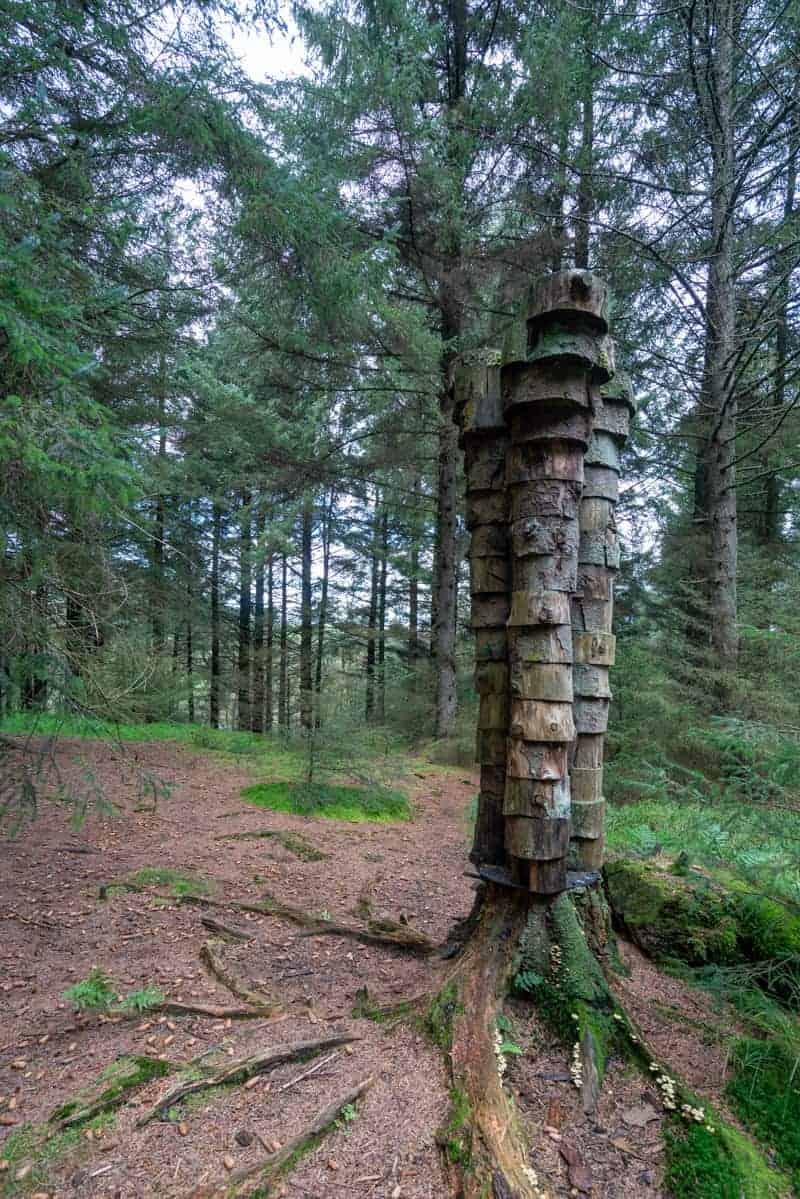 Quaker Tree Sculpture at Pendle Sculpture Trail