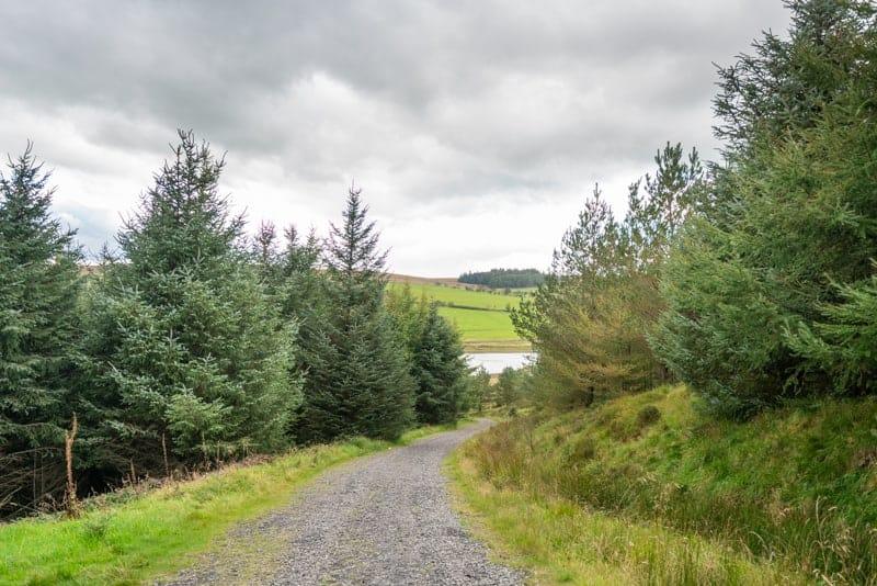 Path down hill