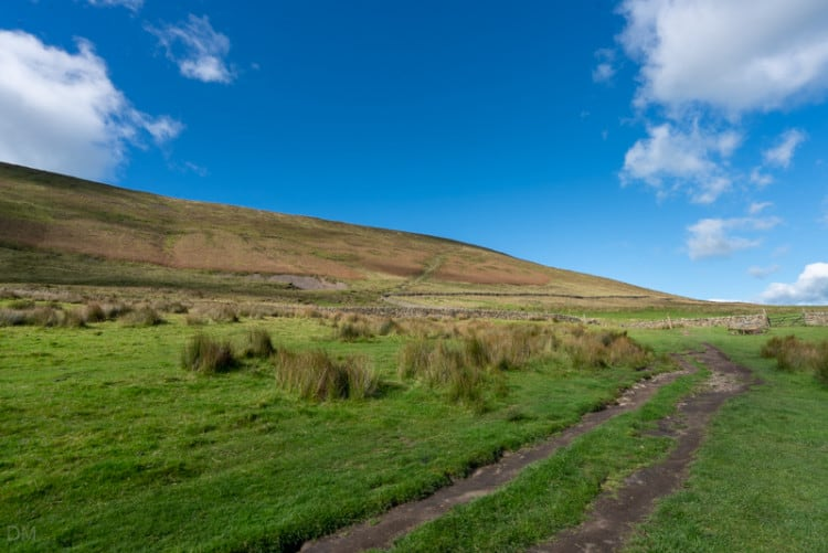 Track from Pendle House Farm