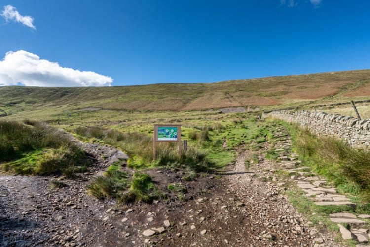 Paths at base of Pendle Hill - left path for 'slope', right path for 'steps'