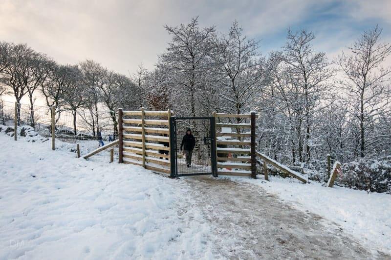 Gate at Walker Fold