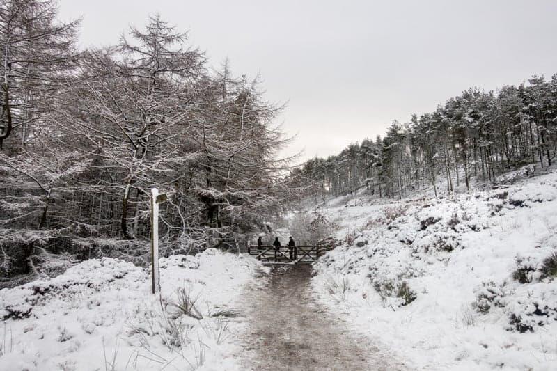 Gate into Walker Fold Woods