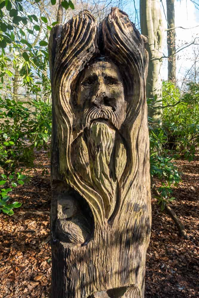 Tree sculpture at Lymm Dam country park, Cheshire