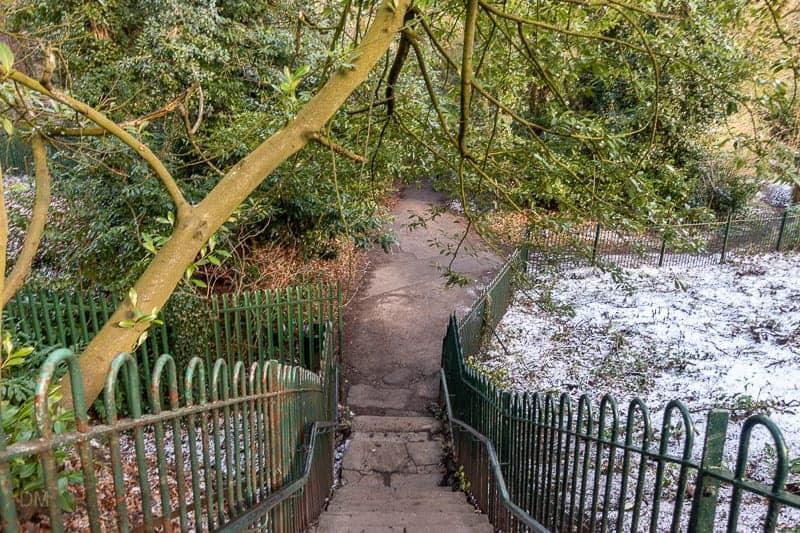 Steps to The Dingle